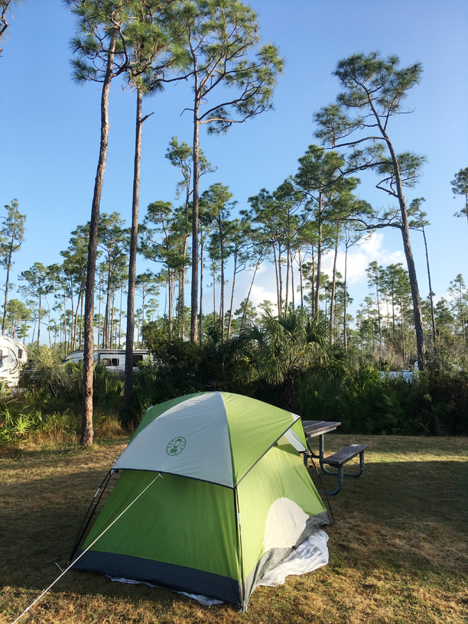 Camping in Long Pine Key, Everglades National Park.
